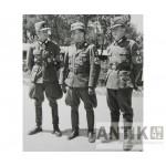 Тесак Германского трудового фронта образца 1934 года